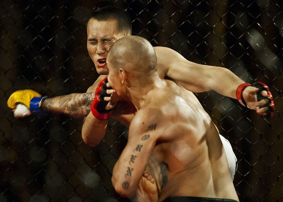 mixed-martial-arts-sport-athletes-boxing